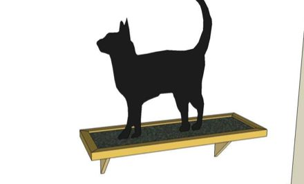 DIY Cat Shelf