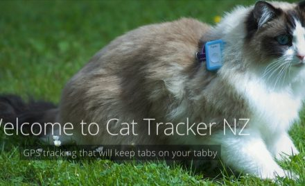 Cat Tracker NZ