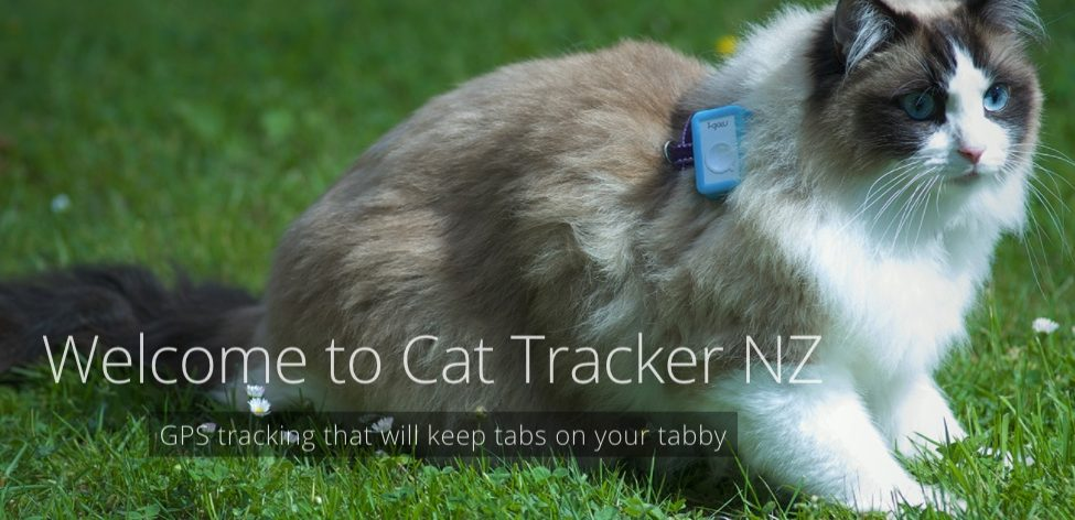 Cat Tracker New Zealand